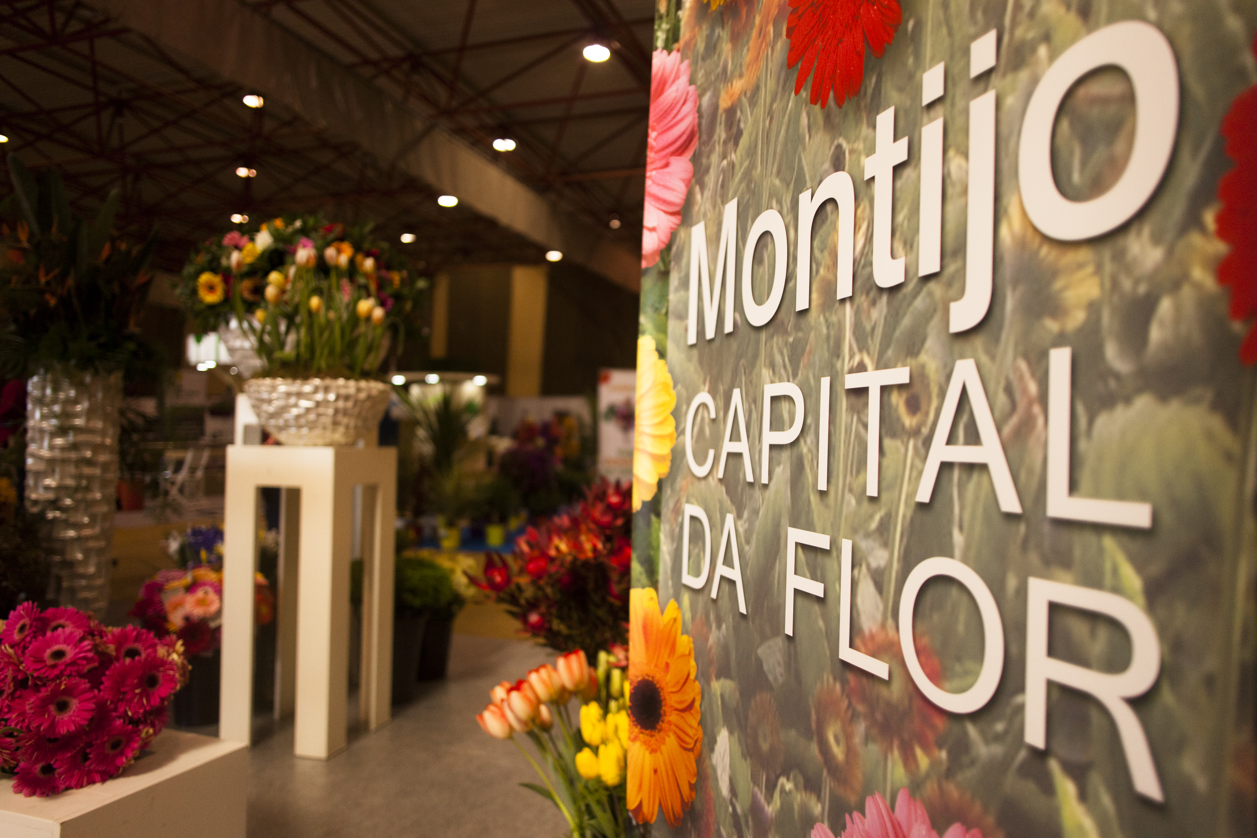 Stand Flores do Montijo