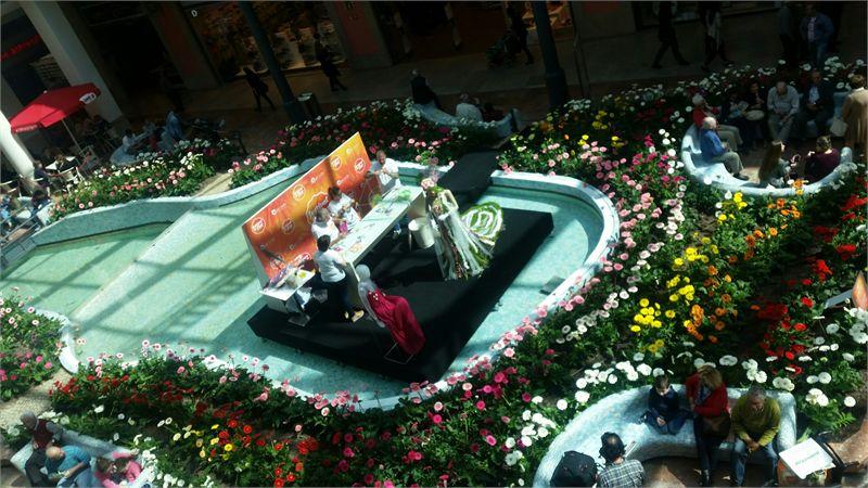 "Festival das ""Flores do Montijo"""