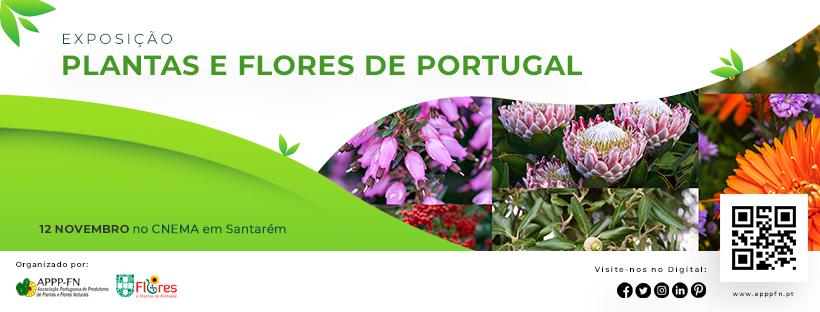 """EXPOSIÇÃO """" PLANTAS E FLORES DE PORTUGAL"""""""